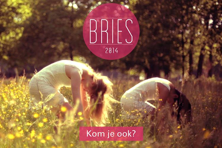 Bries2014—portfolio