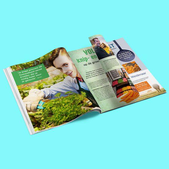 Magazine tekstschrijver - Albert Heijn